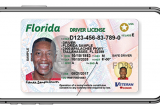 Florida digital driver's license