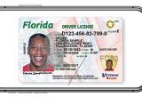 Florida digital driver's license